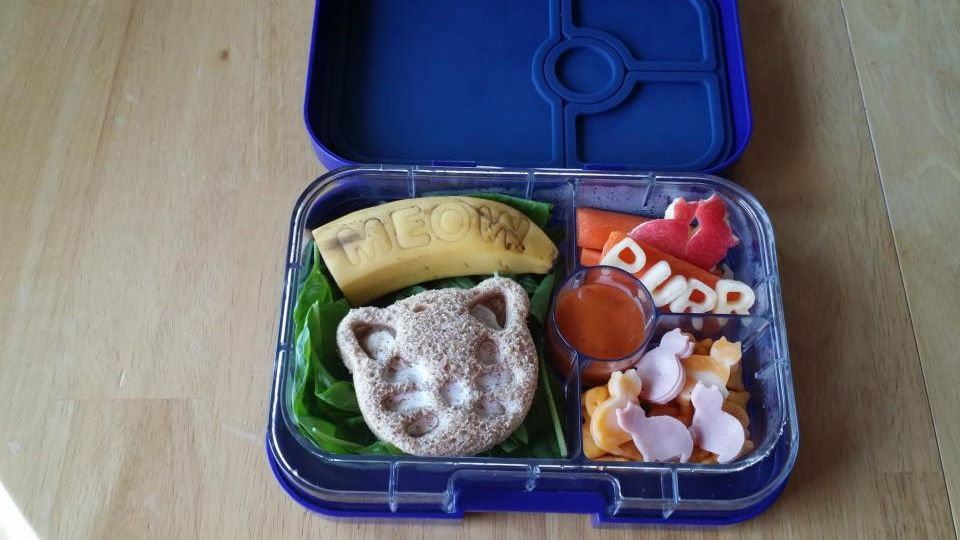 Cat's Meow Bento Lunch